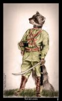 Soviet coon COLOUR by Foxia