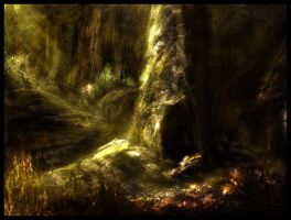 The Lost Forest by skidu