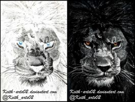 Inverted Drawing ~ Lion by Keith-arts02