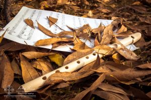 Autumn Melodies: Silence. by abravewolf