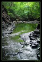 Emerald River by DanSandy