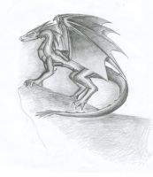 Dragon On Cliff by Dies-a-Irae