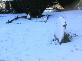 snow, churchyard  oct 29th 25 by dark-dragon-stock