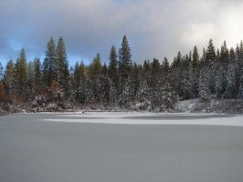 The pond in winter by Rhed-Dawg