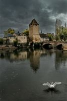 Strasbourg by somebody3121