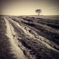 ...country road... by OlegBreslavtsev