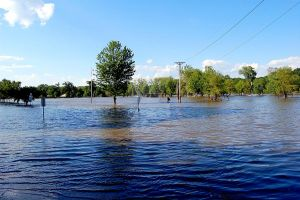 Flooded City Park 2008 by moonlightrose44