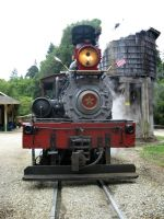 Roaring Camp railway by aliciachristine86