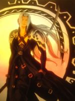 Sephiroth, Most Incinerated by Liojen