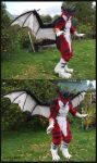 Furry dragon costume by zarathus