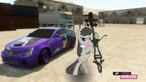 Octavia stops to pratice by EquestianRacer