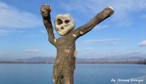 Driftwood and stone art in Hungary by tamas kanya by tom-tom1969