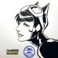 ChamBOOK Headshot - Catwoman by theCHAMBA