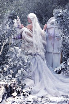 Snow Queen 5 by Agcooper73