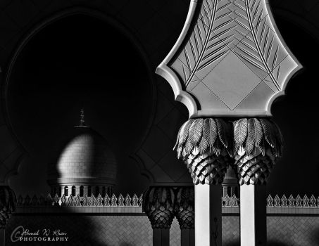 The light by ahmedwkhan