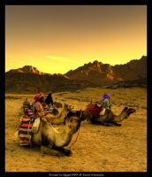Sunset in Egypt HDR by cienki777