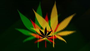 Weed wallpaper by nisfor