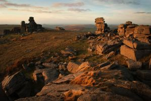 Winter Light at Staple Tor by TamarViewStudio