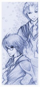 Potter Fever - Harry + Draco by VoicelessCry