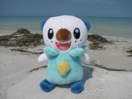 Oshawott's Beach by Emakura