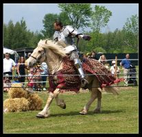 Jousting II by minxes