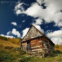 Autumn colors in Apuseni Mountains 4 by adypetrisor