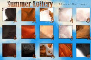 Summer Lottery OM by Moon-illusion