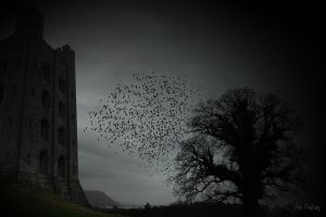 Dark castle and birds - no 2 by Sad-Fantasy