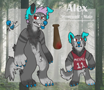 werealex reference sheet by huskynugget