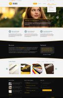 Solaris Premium PSD Web Theme by sadykov