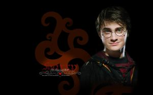 HP Series: Harry Wallpaper by Elfa-dei-boschi