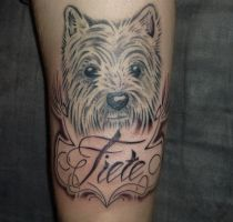 dog and lettering tattoo by D3adFrog