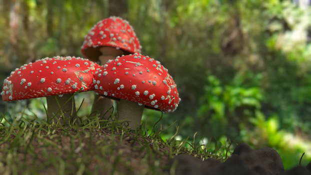Shrooms - Fly Agaric by HuntsForge