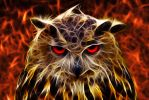 Angry Owl by megaossa