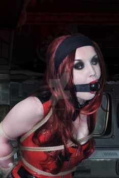 Raven Gagged by Animal-Restrained