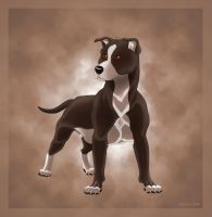 Pitbull by Jenreca