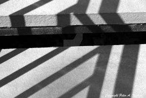 Striped in Black and White by peterkopher