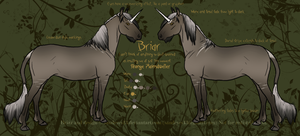 Briar Reference Sheet by sandeyes13