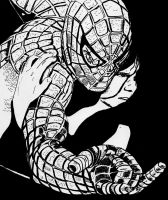 Spiderman.. by ladyjart