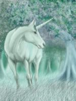 Unicorn Ver1 by 365degrees