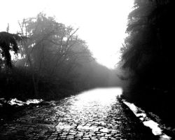 The way by davdiana