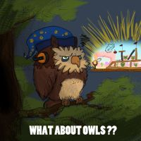 What about owls? by Poksley