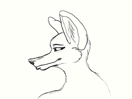 Female Anthro head side view by Dr-Pen