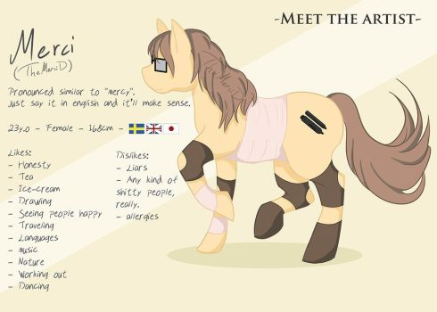 Meet The Artist by TheMerciD