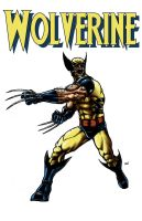 Wolverine Commission by RamonVillalobos