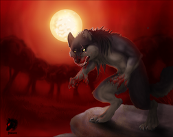 Night of the Wolf by Jeveaux