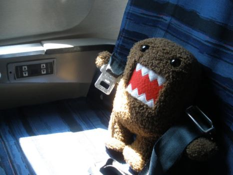 Domo on the plane by ClaraKelley