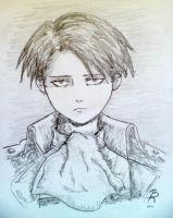 Levi?Levi! by yellowforehead