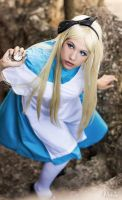 Alice, looking for the white rabbit by xxEtsuko