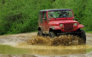 Playing in the Mud by S-H-Photography